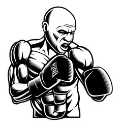 black white of box fighter vector image