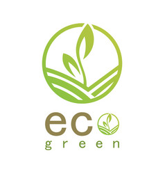 green eco logo vector image