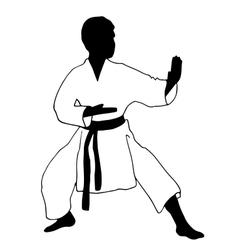Karate boy Sport vector image