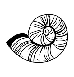 Snail shell isolated icon vector
