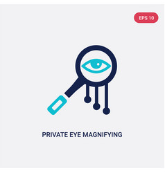 two color private eye magnifying glass icon from vector image