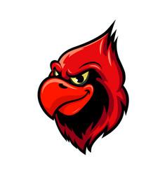 cardinal bird cartoon mascot design vector image vector image