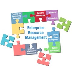 solution to enterprise vector image vector image