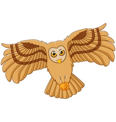 Cartoon flying owl vector