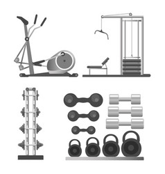 Gym or fitness sport club equipment and vector