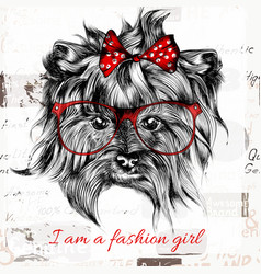 Hand drawn hipster dog with red bow and glasses vector