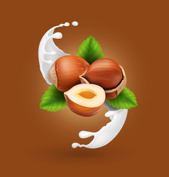 hazelnuts in milk splash realistic nut in yogurt vector image