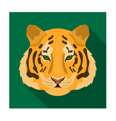 Tiger icon in flat style isolated on white vector