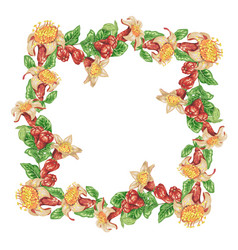 Wreath frame with pomegranate flowers and vector
