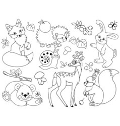 Woodland Animals Set vector image vector image
