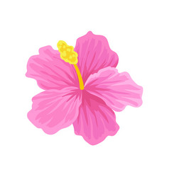 Flat icon of tropical hibiscus with pink vector