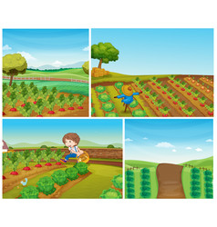 Four farm scenes with vegetables and scarecrow vector