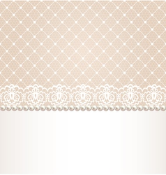 lace floral border on net background vector image