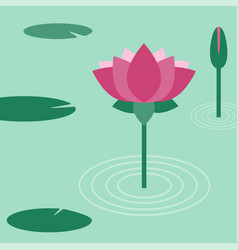 lotus flower flat vector image
