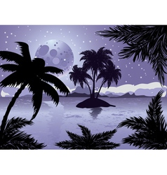 Night tropic island vector image