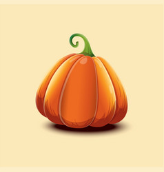 realistic with pumpkin vector image