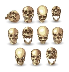 skull set on white background vector image