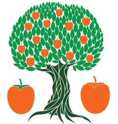 Persimmon tree vector image vector image