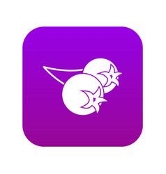 Chokeberry or aronia berry icon digital purple vector