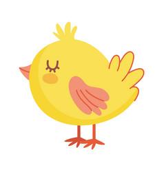 cute little chicken bird animal farm icon vector image