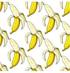 banana seamless pattern isolated hand vector image