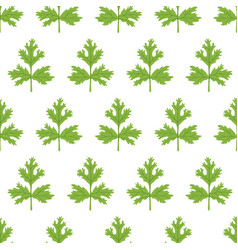 coriander seamless pattern cartoon flat vector image