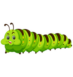 cute happy green catapillar vector image