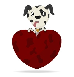 Dalmatian puppy with heart vector