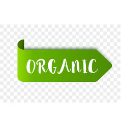 eco organic label or tag vector image