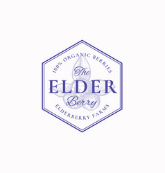 elderberry farm badge or logo template hand drawn vector image