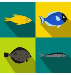 Fish banners set flat style vector image