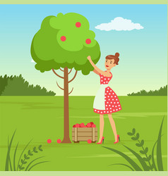 flat woman character collecting the harvest vector image