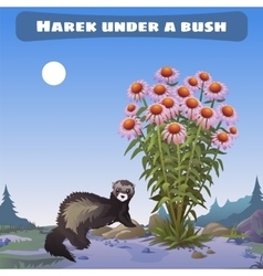 Harek under a bush vector image