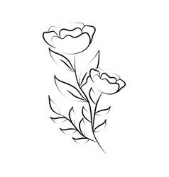 minimalist tattoo flowers spring line art herb vector image