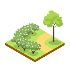 Park alley with bushes and tree isometric 3d icon vector