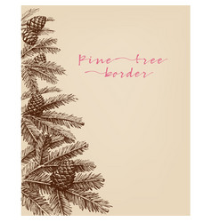pine tree branches pine cones hand drawn in vector image