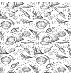 sketch rice seamless pattern outline cereal ears vector image