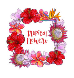 Square frame of tropical flowers and palm leaves vector