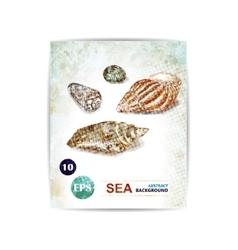vintage marine background with seashells vector image vector image