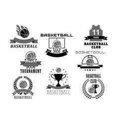 Basketball icons set for club championship vector