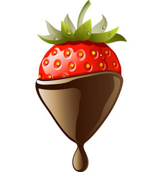 chocolate covered strawberry vector image