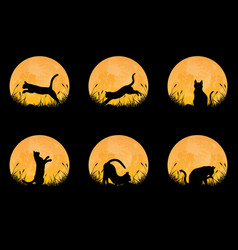collection cat silhouette with full moon vector image