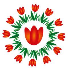 colored circular spring mandala flower tulip vector image