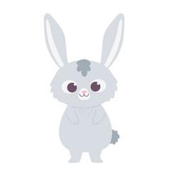 cute little rabbit animal cartoon isolated design vector image