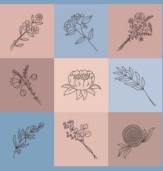 minimalist line flowers simple poster vector image