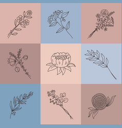 minimalist line flowers simple poster with vector image