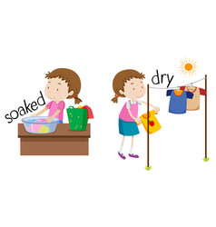 Opposite word of soaked and dry vector