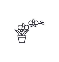 orchid pot line icon concept orchid pot flat vector image