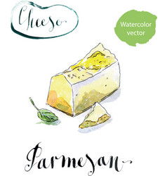 Pieces of delicious gourmet organic parmesan vector