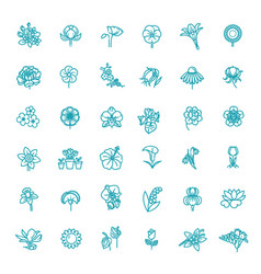 set floral icon in flat design vector image